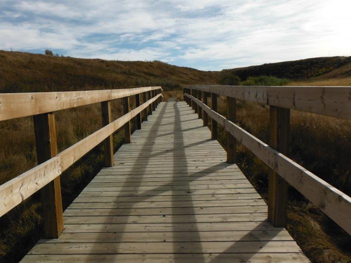 larkycanuck.com | Travel Adventures | Canada | Nose Creek Pathway Calgary