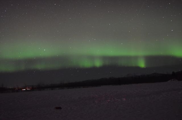 Northern Lights – Aurora Borealis Tour in Whitehorse |Budget