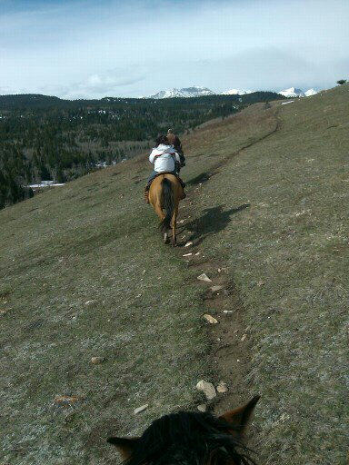 Mountain Meadow Horseback Riding Adventure | Alberta | Canada | Travel Adventures | larkycanuck.com