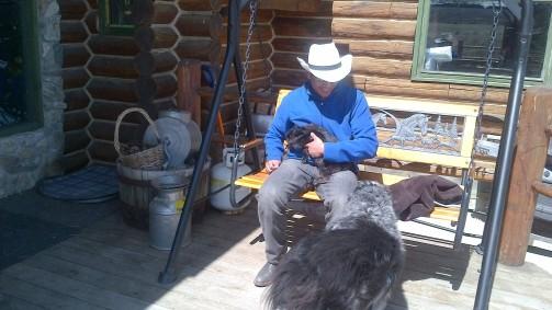 Mountain Meadow Horseback Riding Adventure   Alberta   Canada   Travel Adventures   larkycanuck.com
